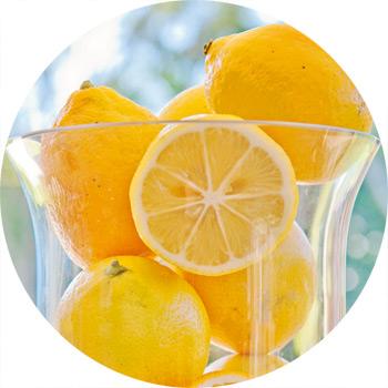 lemon-circles-sml
