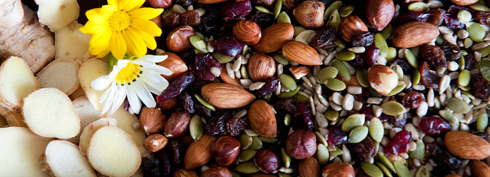 slide_fruitnut